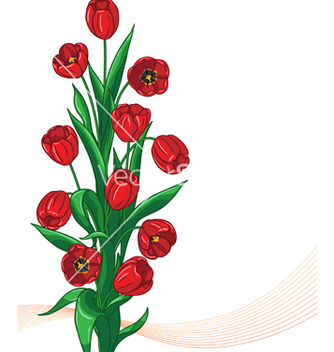 Free red tulip bunch vector - бесплатный vector #235769