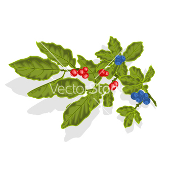 Free blueberries twig vector - Free vector #237019