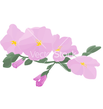 Free orchid stem with flowers vector - Free vector #237629