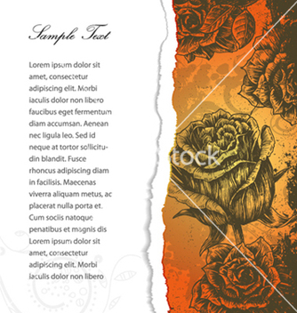 Free torn cardboard with roses vector - Free vector #262219