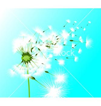 Free dandelion vector - vector gratuit #264139