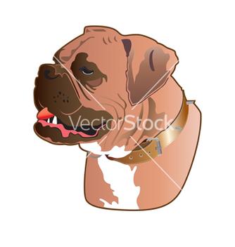Free boxer dog vector - Free vector #267189