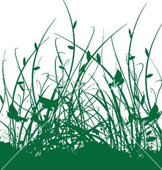 Free floral vine garden vector - Free vector #271369