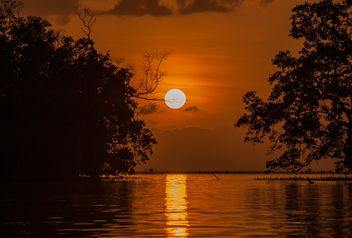 Golden sunset - image gratuit #271789