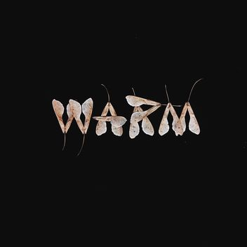 Word warm made of dry leaves on black background - image gratuit #272229