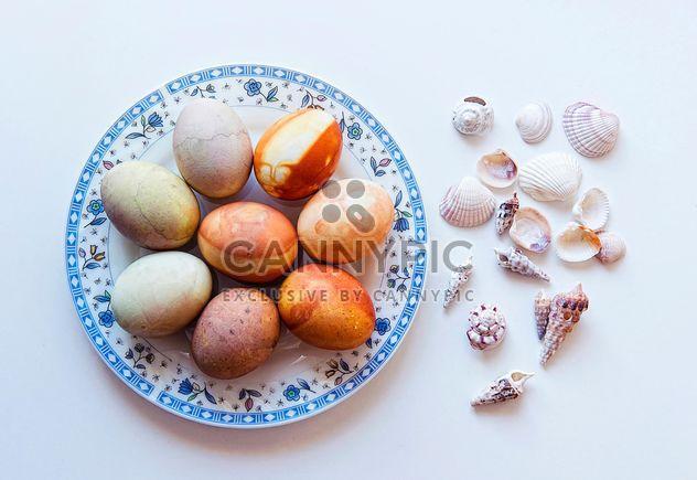 Coquillages et oeufs de Pâques - image gratuit #272339