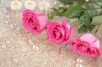 Pink roses, pearls and candles - бесплатный image #272549
