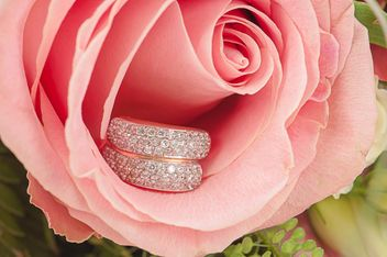 Ring in flower - image #272579 gratis