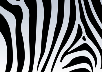 Zebra Print Vector Background - vector gratuit #273359