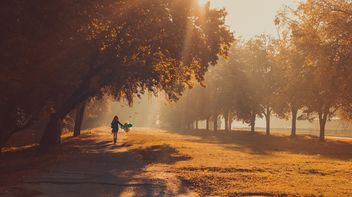 Girl with balloons in autumn park - бесплатный image #273799