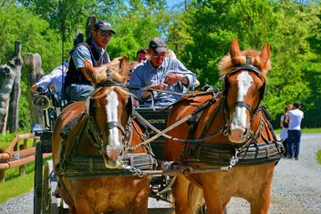 carriage drawn by two horses - image gratuit(e) #275039