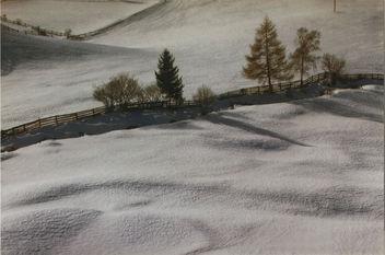 Snow - image #275859 gratis