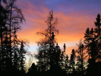 Night Sky - image #276239 gratis