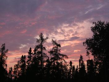 Night Sky - Kostenloses image #276299