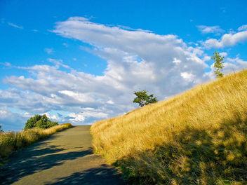 Calton Hill - Free image #278619