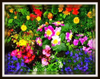 Summer gems - бесплатный image #279279