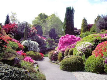 The Rock Garden, Leonardslee Gardens - бесплатный image #279819