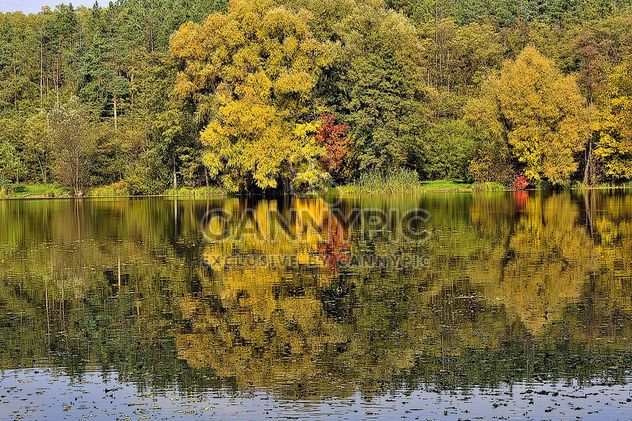 Autumn lake - Free image #280929