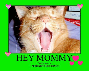 To My Mommy Sandy - image gratuit #281349