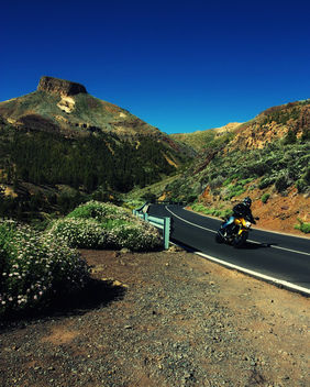 downhill - Free image #284299