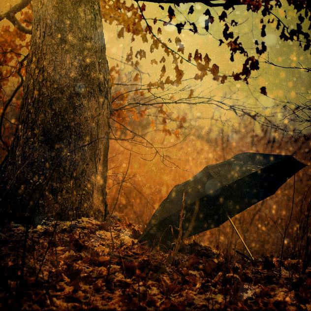 Rainy Day People - Free image #285749