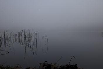 straw fogs - Free image #287629
