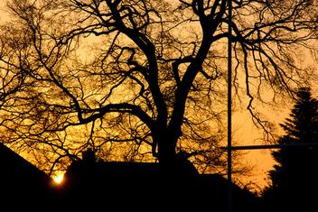 Sunrise - Free image #288389