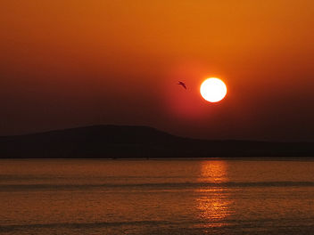 Sunrise - бесплатный image #288769