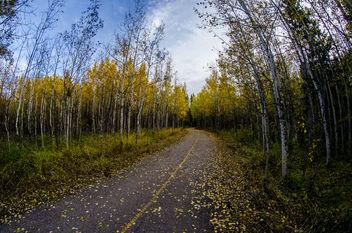 Path - Free image #289519