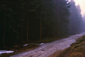 Fog - image gratuit #290119