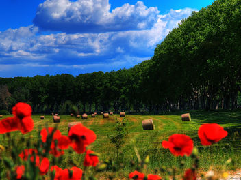 french countryside - image #292189 gratis