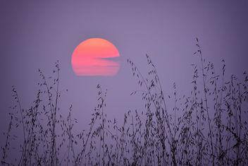 Sunset - Kostenloses image #293269