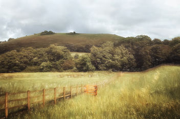 rural dorset scene - бесплатный image #294069