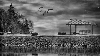 Lake Scene - Kostenloses image #294149