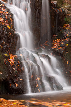 Avalon Falls - image gratuit #294839