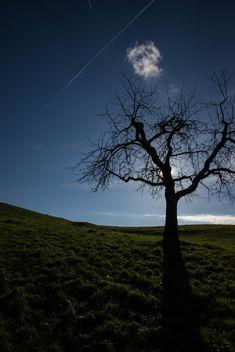 Crowded skies - image gratuit #295469