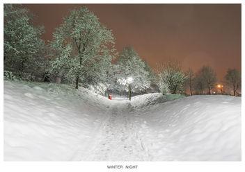 Winter Night 1 - Free image #295999