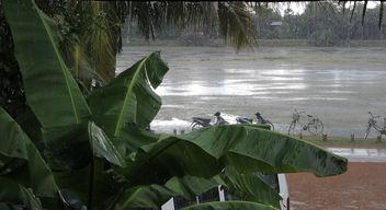 Siem Reap-Heavy Rain - бесплатный image #296499