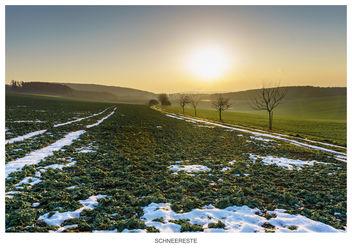 Last snow - Free image #296519