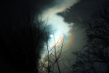 Daylight - Free image #296819