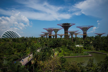 Gardens By The Bay, Singapore. - image gratuit #299079