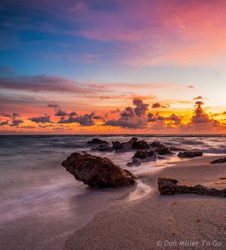 My Florida - image gratuit #299969