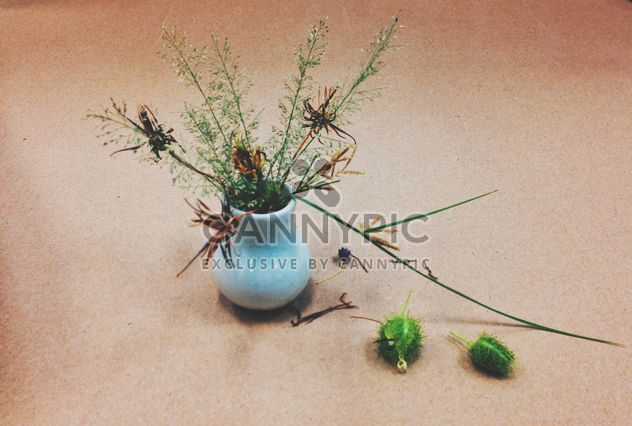 Fleurs séchées dans un vase - image gratuit #301389