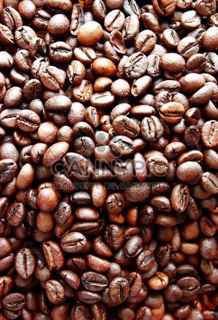 Coffee beans - Free image #302299