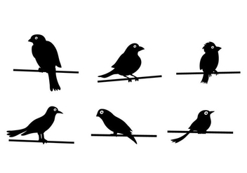 Bird On Wire Vector - Free vector #304969