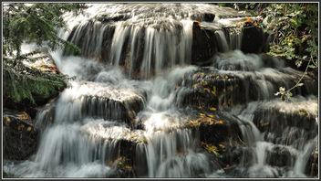 P1470206 Carshalton Ponds.. - image gratuit #306669