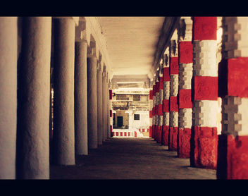 Red, White, Light & Pattern! - Free image #310089