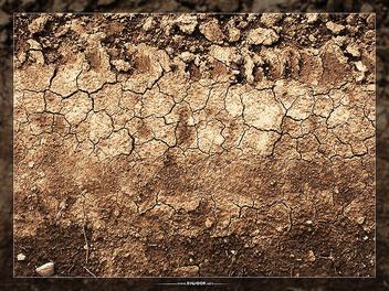 Texture - image gratuit(e) #310279