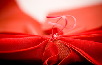 Macro Morning - Red Ribbon - Free image #310909