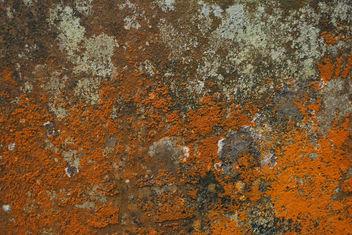 Texture - image #313669 gratis